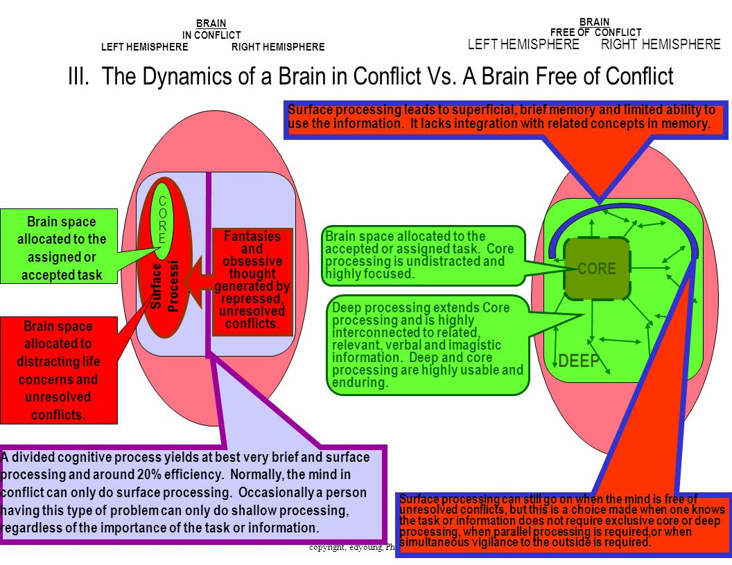 7 III. The Dynamics of a Brain in Conflict Vs.