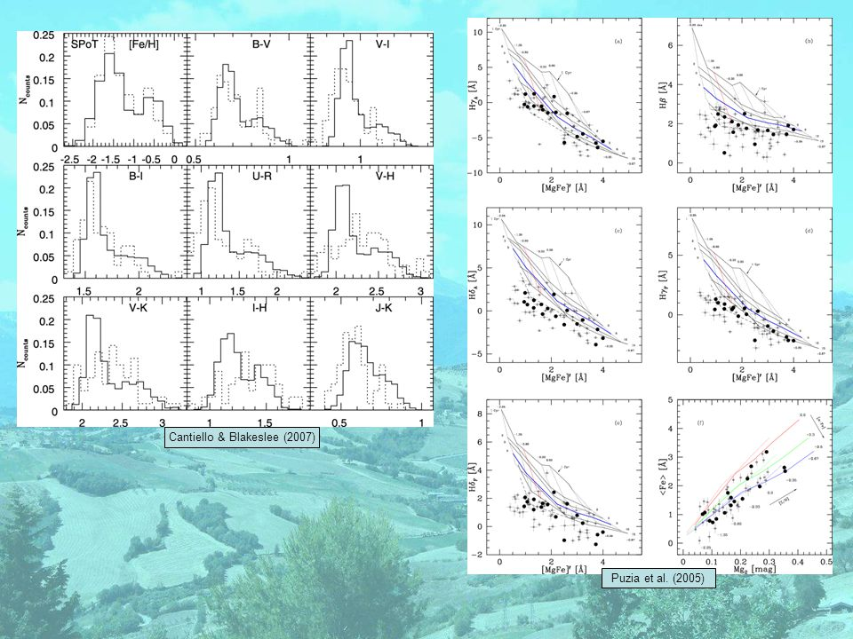 Peng et al. (2006) NGC5128 Beasley et al. (2008) Spitler et al. (2008)