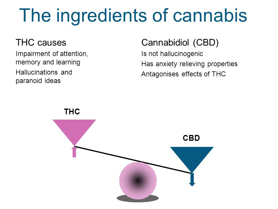 THC The ingredients of cannabis THC causes Impairment of attention, memory and learning Hallucinations and paranoid ideas Cannabidiol (CBD) Is not hallucinogenic Has anxiety relieving properties Antagonises effects of THC CBD