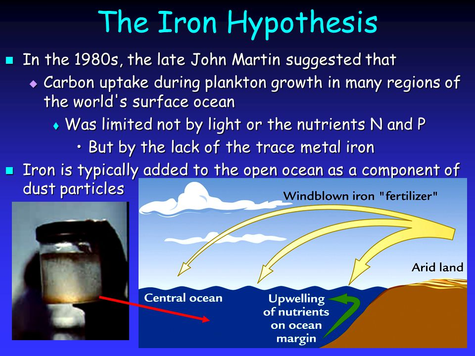 The Iron Hypothesis In the 1980s, the late John Martin suggested that In the 1980s, the late John Martin suggested that  Carbon uptake during plankton growth in many regions of the world s surface ocean  Was limited not by light or the nutrients N and P But by the lack of the trace metal ironBut by the lack of the trace metal iron Iron is typically added to the open ocean as a component of dust particles Iron is typically added to the open ocean as a component of dust particles