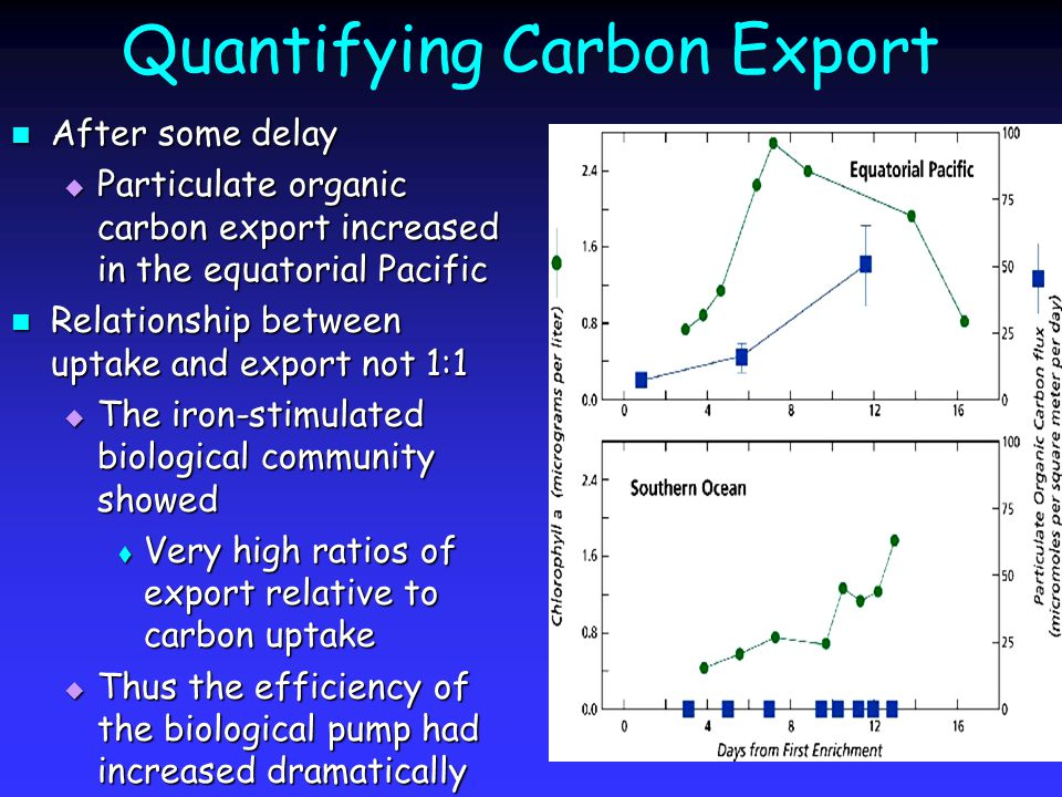 Quantifying Carbon Export After some delay After some delay  Particulate organic carbon export increased in the equatorial Pacific Relationship between uptake and export not 1:1 Relationship between uptake and export not 1:1  The iron-stimulated biological community showed  Very high ratios of export relative to carbon uptake  Thus the efficiency of the biological pump had increased dramatically