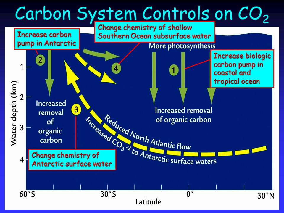 Carbon System Controls on CO 2 Increase biologic carbon pump in coastal and tropical ocean Increase carbon pump in Antarctic Change chemistry of Antarctic surface water Change chemistry of shallow Southern Ocean subsurface water