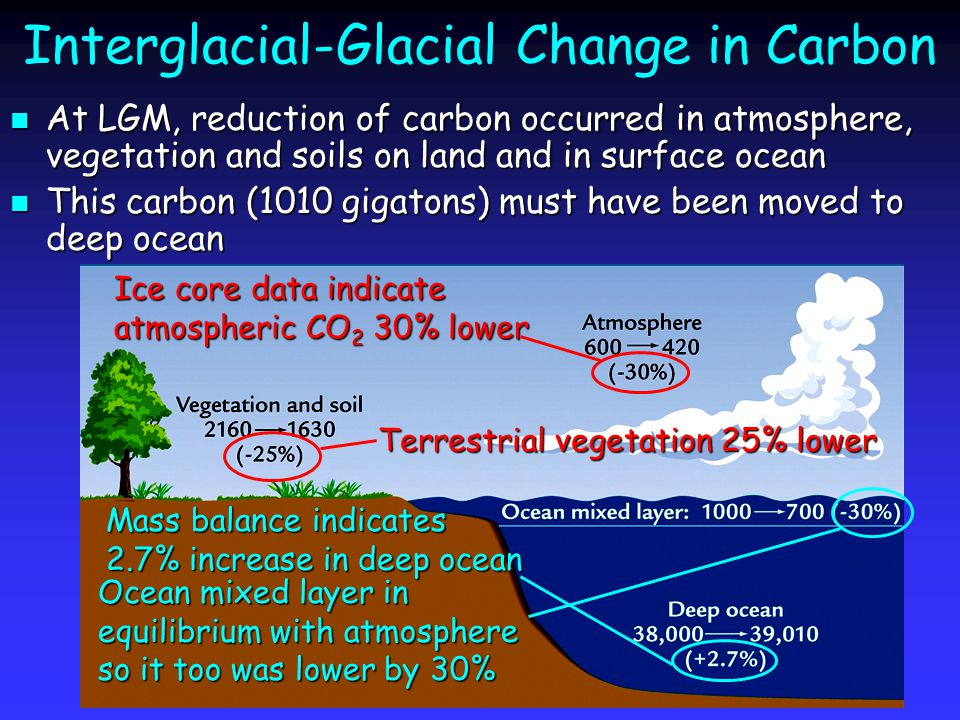 Interglacial-Glacial Change in Carbon At LGM, reduction of carbon occurred in atmosphere, vegetation and soils on land and in surface ocean At LGM, reduction of carbon occurred in atmosphere, vegetation and soils on land and in surface ocean This carbon (1010 gigatons) must have been moved to deep ocean This carbon (1010 gigatons) must have been moved to deep ocean Ice core data indicate atmospheric CO 2 30% lower Ocean mixed layer in equilibrium with atmosphere so it too was lower by 30% Terrestrial vegetation 25% lower Mass balance indicates 2.7% increase in deep ocean