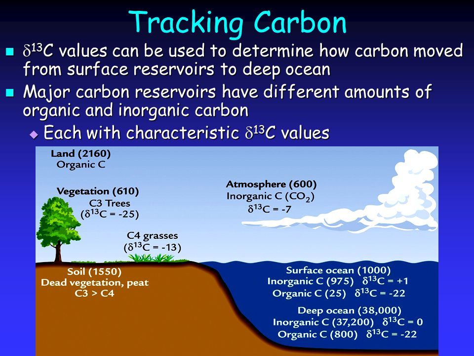  13 C Aging As the C org in deep water is gradually oxidized As the C org in deep water is gradually oxidized  12 C-rich CO 2 released lowering  13 C DIC  Particularly evident in deep Pacific waters