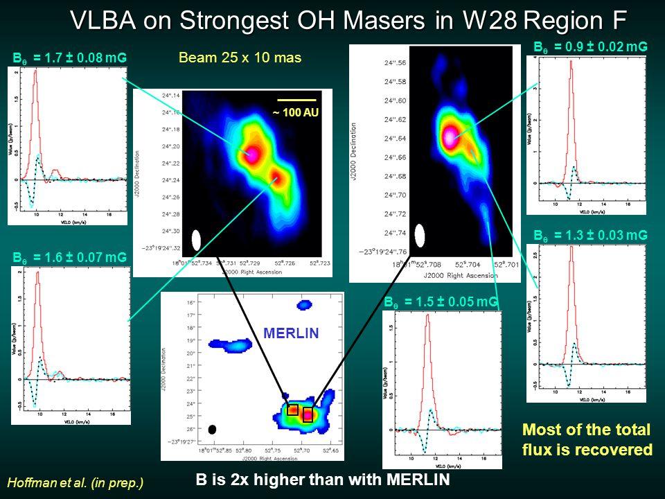 VLBA on Strongest OH Masers in W28 Region F B  = 1.5 ± 0.05 mG B  = 1.7 ± 0.08 mG B  = 1.6 ± 0.07 mG B  = 1.3 ± 0.03 mG B  = 0.9 ± 0.02 mG MERLIN Hoffman et al.