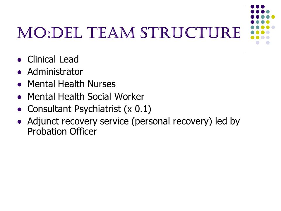 MO:DEL Team Structure Clinical Lead Administrator Mental Health Nurses Mental Health Social Worker Consultant Psychiatrist (x 0.1) Adjunct recovery service (personal recovery) led by Probation Officer