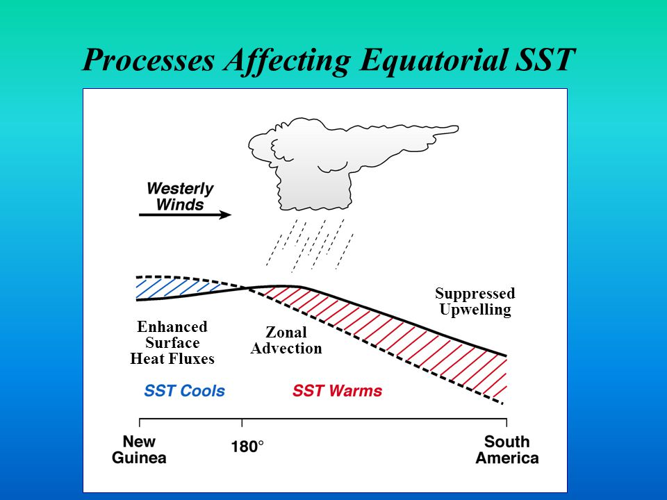Processes Affecting Equatorial SST Enhanced Surface Heat Fluxes Zonal Advection Suppressed Upwelling