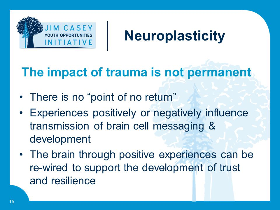 "15 There is no ""point of no return"" Experiences positively or negatively influence transmission of brain cell messaging & development The brain throug"