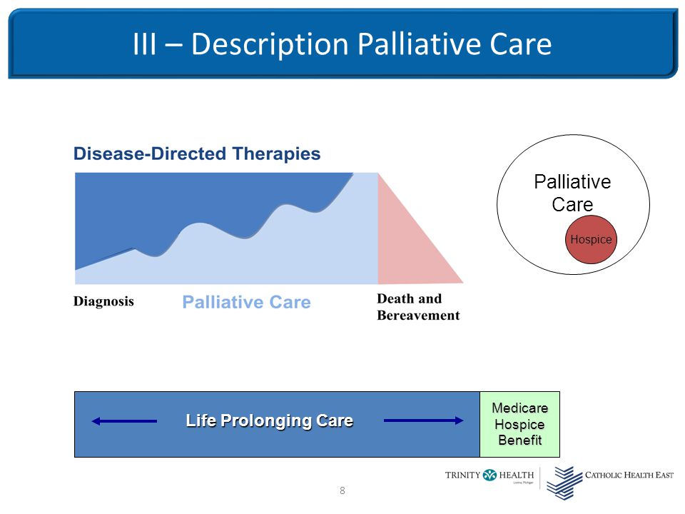 8 III – Description Palliative Care Life Prolonging Care Medicare Hospice Benefit Palliative Care Hospice