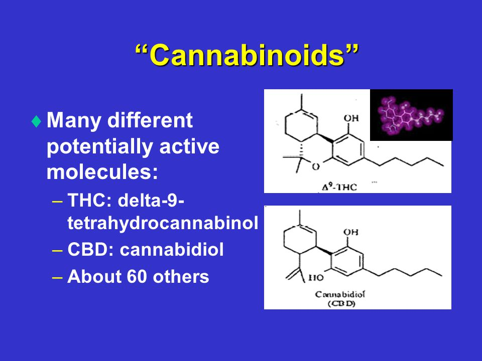 Cannabinoids   Many different potentially active molecules: – –THC: delta-9- tetrahydrocannabinol – –CBD: cannabidiol – –About 60 others