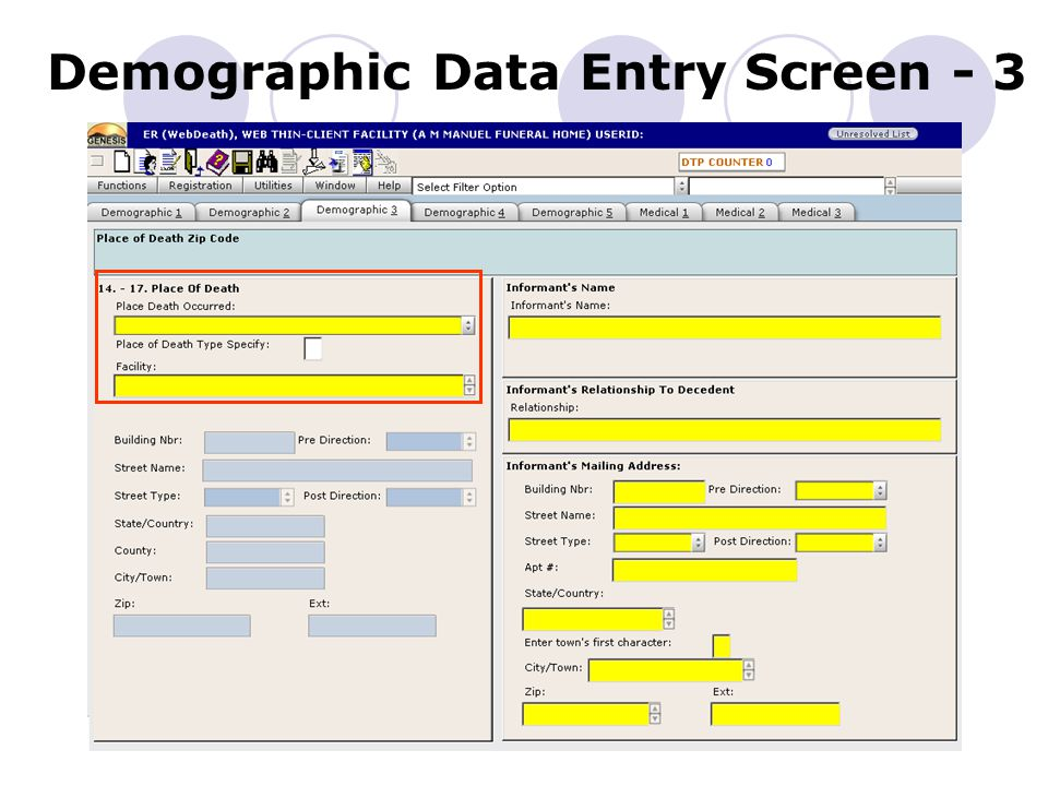 Demographic Data Entry Screen - 3