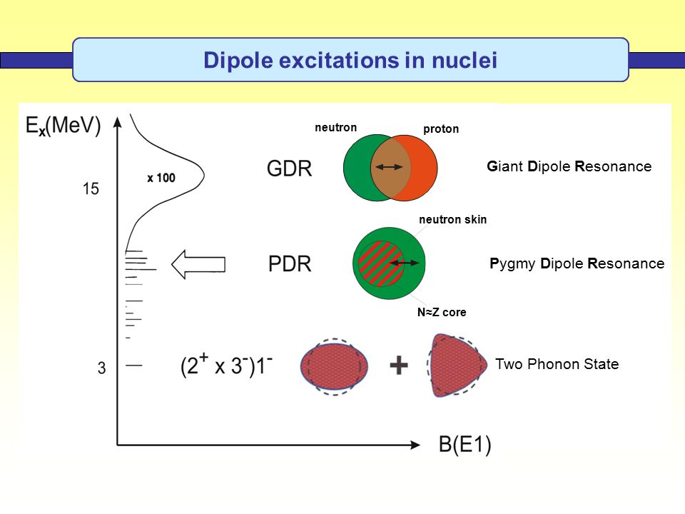 Pygmy Dipole Resonance Giant Dipole Resonance neutron skin N≈Z core neutron proton Two Phonon State x Dipole excitations in nuclei
