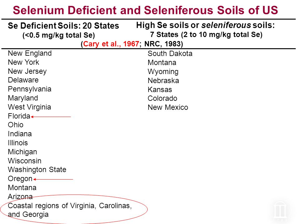 Selenium Deficient and Seleniferous Soils of US Se Deficient Soils: 20 States (<0.5 mg/kg total Se) New England New York New Jersey Delaware Pennsylvania Maryland West Virginia Florida Ohio Indiana Illinois Michigan Wisconsin Washington State Oregon Montana Arizona Coastal regions of Virginia, Carolinas, and Georgia South Dakota Montana Wyoming Nebraska Kansas Colorado New Mexico High Se soils or seleniferous soils: 7 States (2 to 10 mg/kg total Se) (Cary et al., 1967; NRC, 1983)