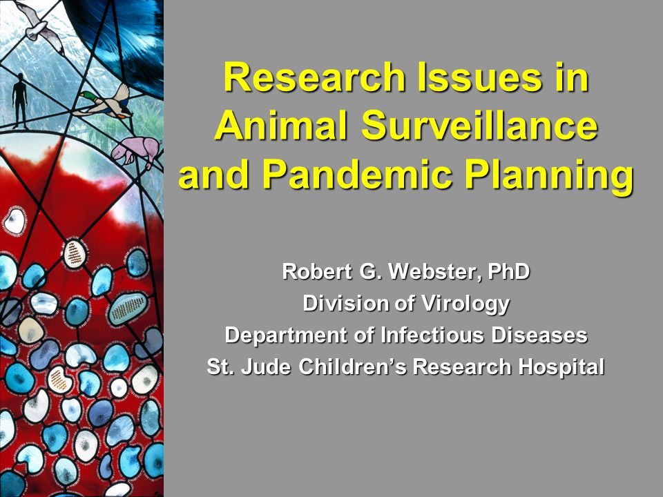 Research Issues in Animal Surveillance and Pandemic Planning Robert G.