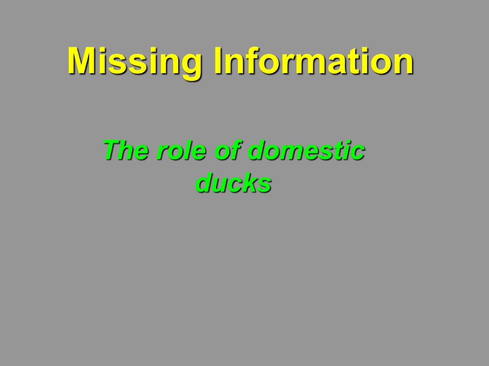 Missing Information The role of domestic ducks