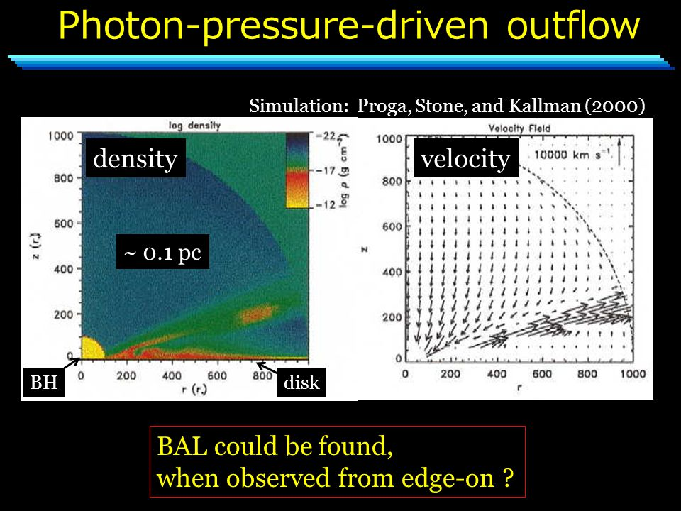 Photon-pressure-driven outflow Simulation: Proga, Stone, and Kallman (2000) densityvelocity ~ 0.1 pc BHdisk BAL could be found, when observed from edge-on