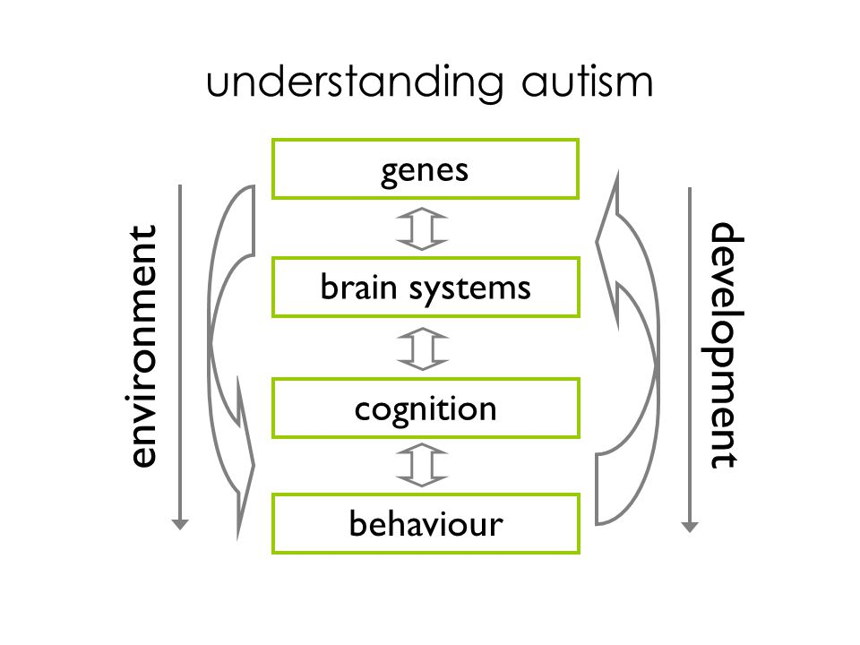 understanding autism brain systems cognition behaviour environment genes development