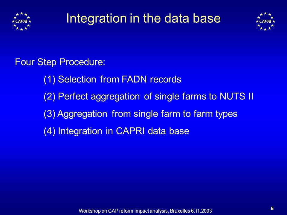 Workshop on CAP reform impact analysis, Bruxelles 6.11.2003 5 CAPRI Integration in the data base Four Step Procedure: (1) Selection from FADN records (2) Perfect aggregation of single farms to NUTS II (3) Aggregation from single farm to farm types (4) Integration in CAPRI data base