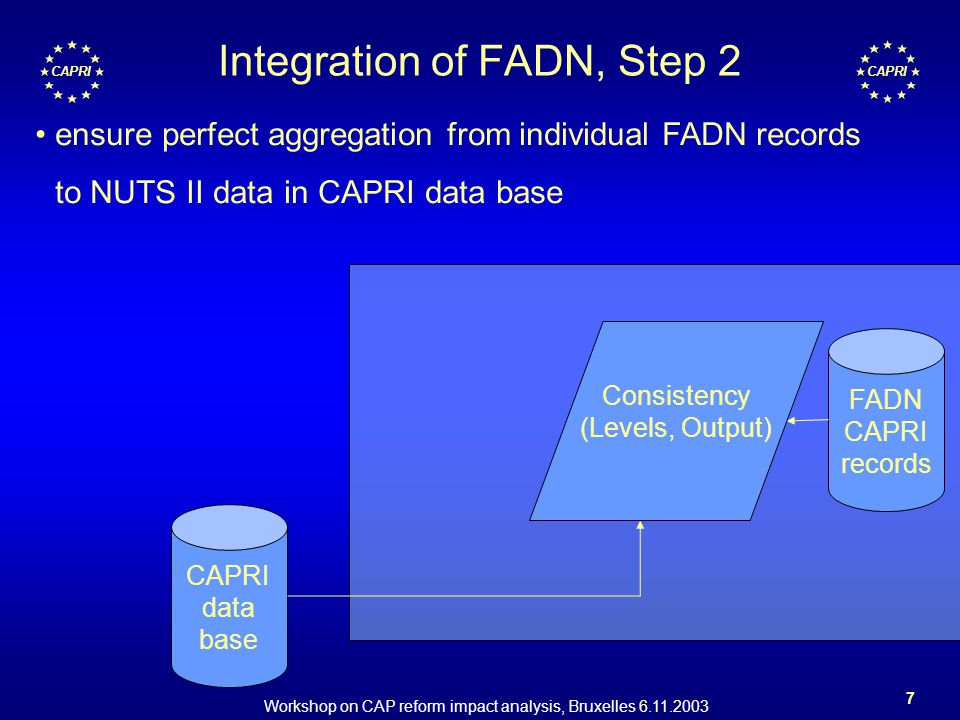 Workshop on CAP reform impact analysis, Bruxelles 6.11.2003 7 CAPRI Integration of FADN, Step 2 FADN CAPRI records CAPRI data base Consistency (Levels, Output) ensure perfect aggregation from individual FADN records to NUTS II data in CAPRI data base