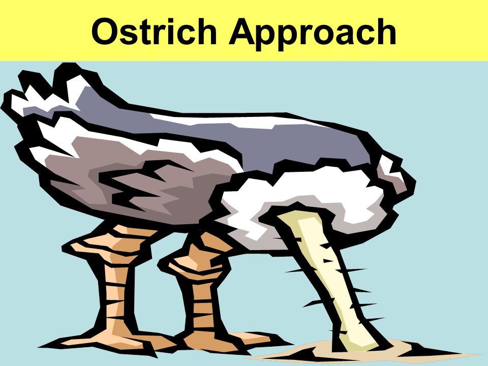 Ostrich Approach