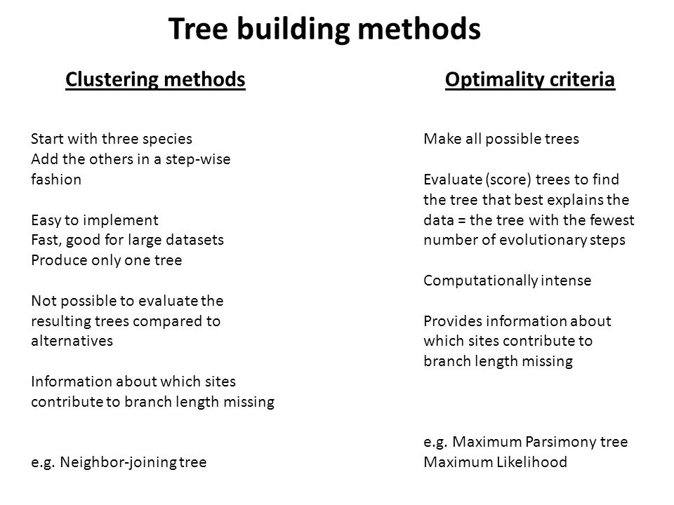 Clustering methodsOptimality criteria Start with three species Add the others in a step-wise fashion Easy to implement Fast, good for large datasets Produce only one tree Not possible to evaluate the resulting trees compared to alternatives Information about which sites contribute to branch length missing e.g.