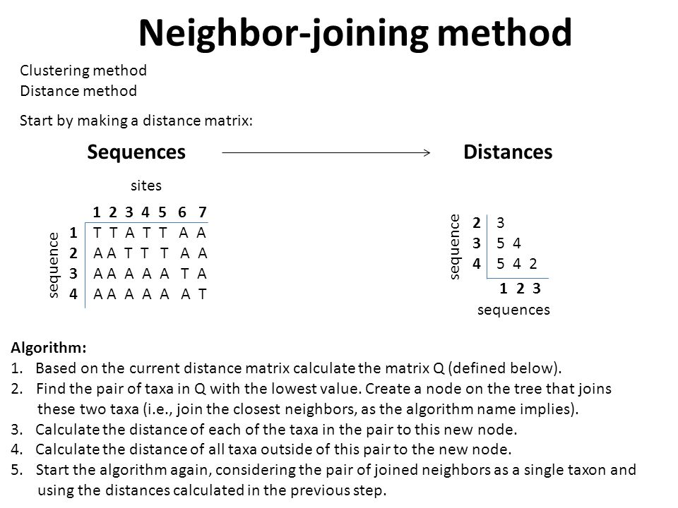 Neighbor-joining method Clustering method Distance method Start by making a distance matrix: Algorithm: 1.