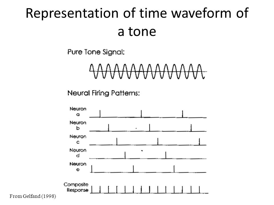 Representation of time waveform of a tone From Gelfand (1998)