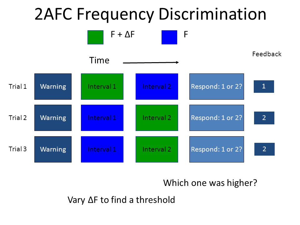 2AFC Frequency Discrimination Time WarningInterval 1Interval 2Respond: 1 or 2.