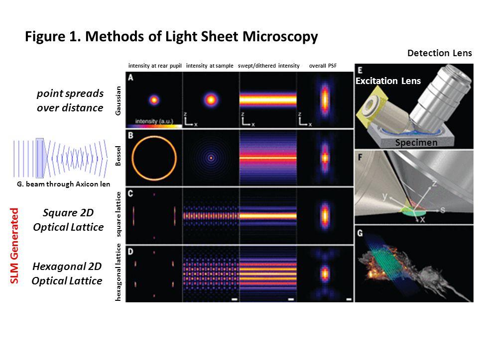 Figure 1. Methods of Light Sheet Microscopy G.