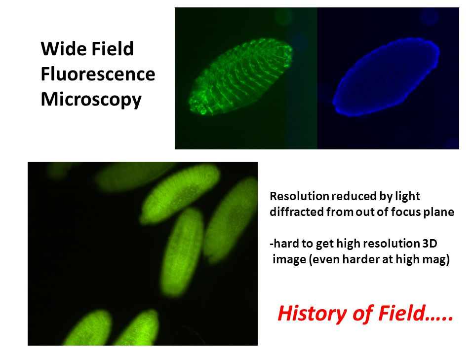 Development of Confocal Microscopy (~1990s) Standard Widefield Confocal Microscopy Provides optical section of membrane protein Unresolved Blur