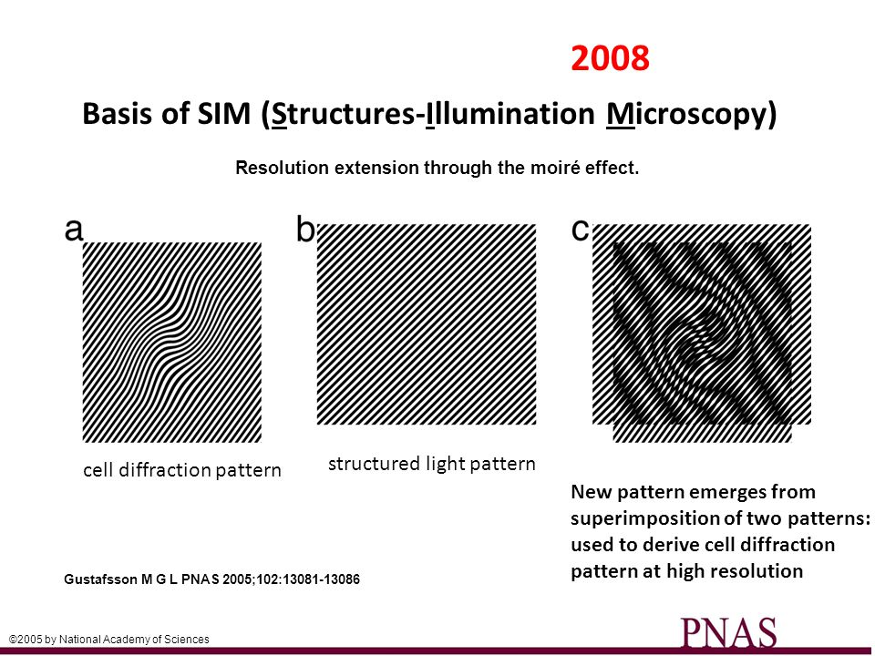Lattice Light Sheet Microscopy- Latest Development -2D opticle lattice light sheet directed through single plane perpendicular to detection lens -interference pattern of opticle lattice eliminates unwanted diffraction within illuminated plane to further reduce diffraction: increased resolution and reduced phototoxicity/photobleaching -allows live imaging of dynamic processes at or below the resolution limit of light microscopy (~200 nm) Article #2