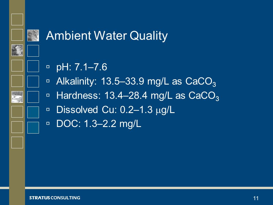 STRATUS CONSULTING Ambient Water Quality  pH: 7.1–7.6  Alkalinity: 13.5–33.9 mg/L as CaCO 3  Hardness: 13.4–28.4 mg/L as CaCO 3  Dissolved Cu: 0.2–1.3  g/L  DOC: 1.3–2.2 mg/L 11