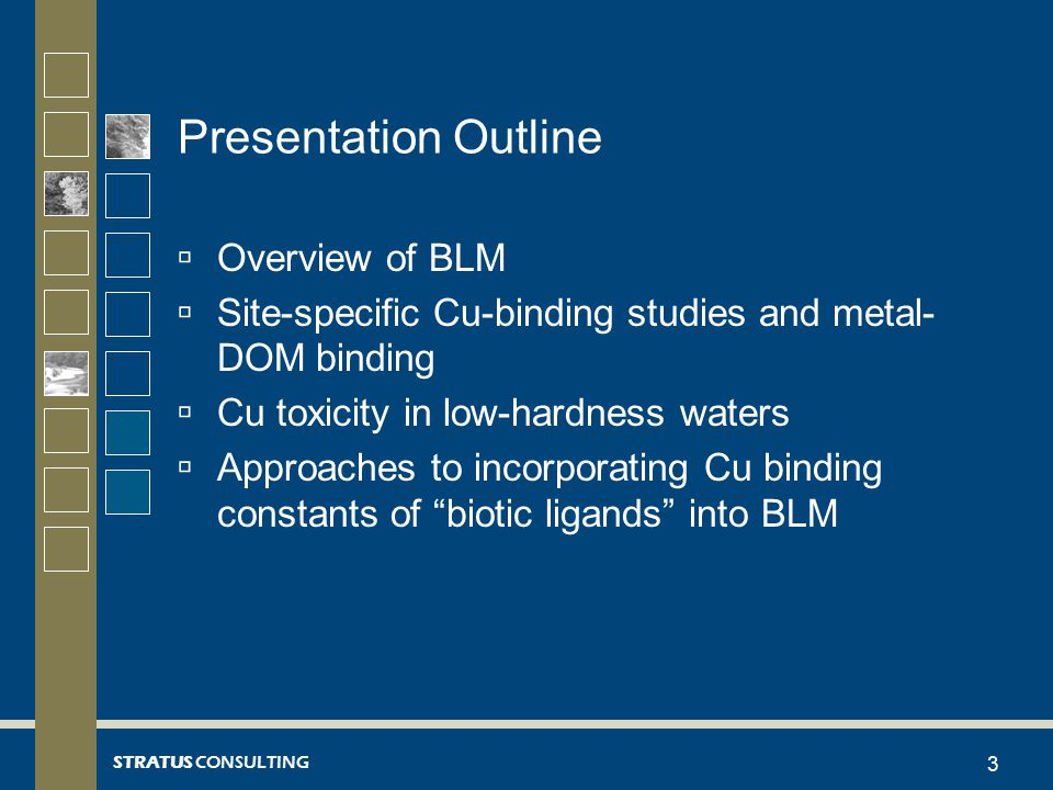 STRATUS CONSULTING Presentation Outline  Overview of BLM  Site-specific Cu-binding studies and metal- DOM binding  Cu toxicity in low-hardness waters  Approaches to incorporating Cu binding constants of biotic ligands into BLM 3