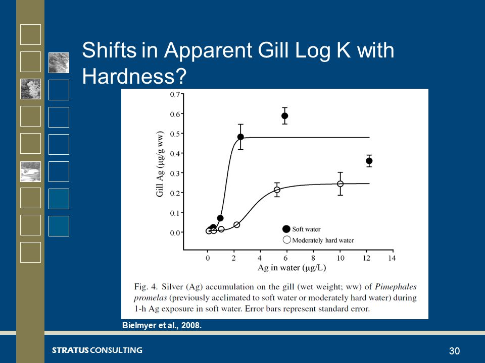 STRATUS CONSULTING Shifts in Apparent Gill Log K with Hardness? 30 Bielmyer et al., 2008.