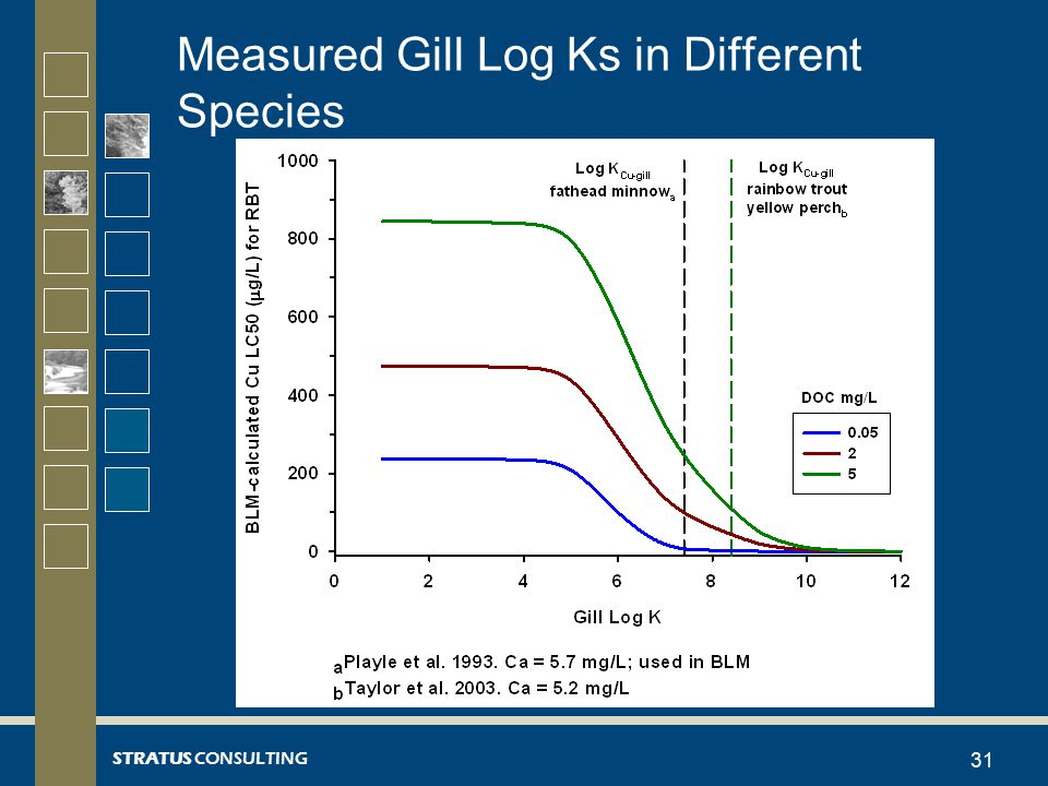 STRATUS CONSULTING Measured Gill Log Ks in Different Species 31