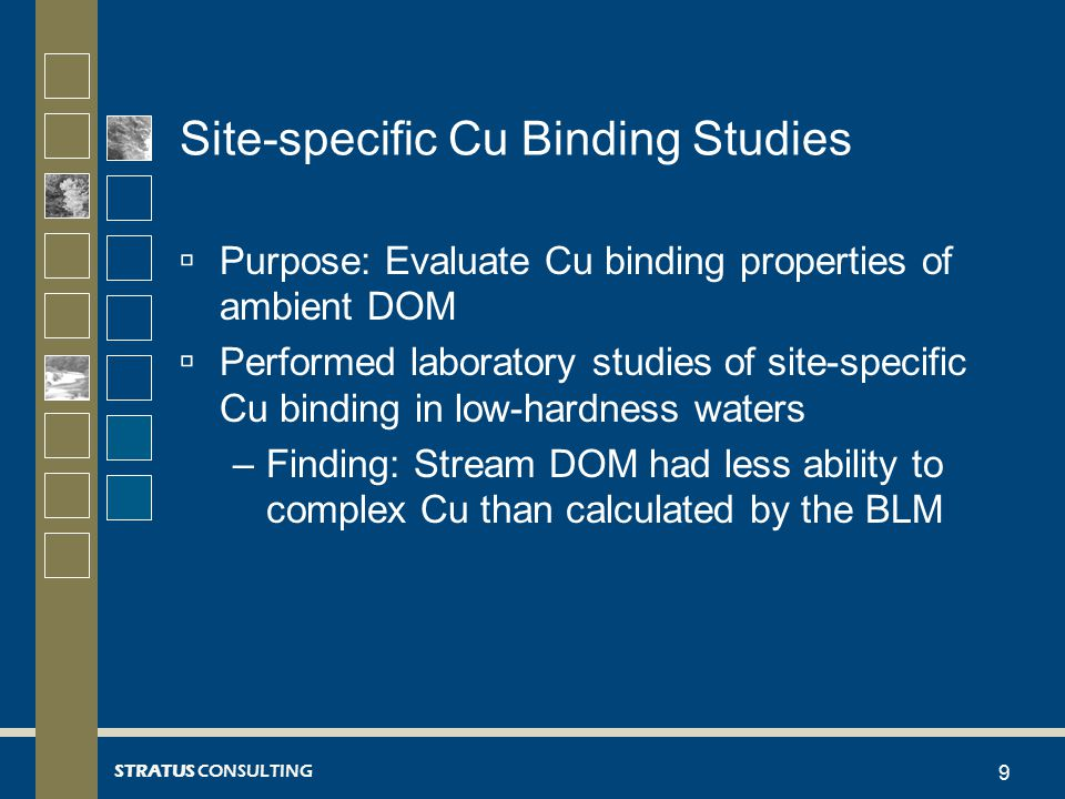 STRATUS CONSULTING Summary of Cu Binding Results  BLM under-predicted free Cu compared to site-specific estimates  Needed to lower DOC in BLM to attain same free Cu results – similar findings to other researchers (e.g., De Schamphelaere et al., 2004; Welsh et al., 2008), but somewhat greater magnitude of adjustment  Results in a ~ 5-fold decrease in instantaneous WQC compared to BLM 20