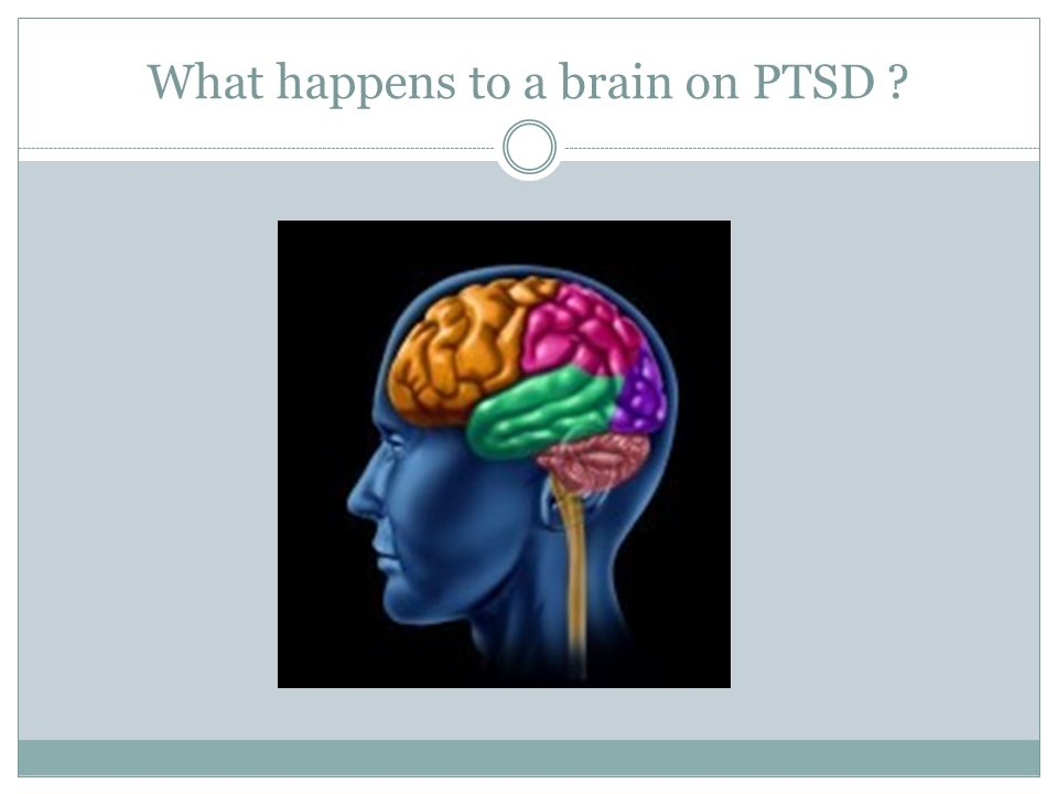 What happens to a brain on PTSD ?