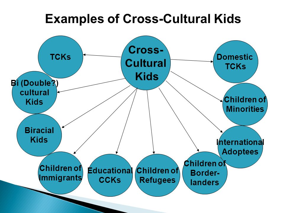 Cross- Cultural Kids Children of Immigrants Children of Minorities Domestic TCKs Biracial Kids Bi (Double?) cultural Kids TCKs International Adoptees