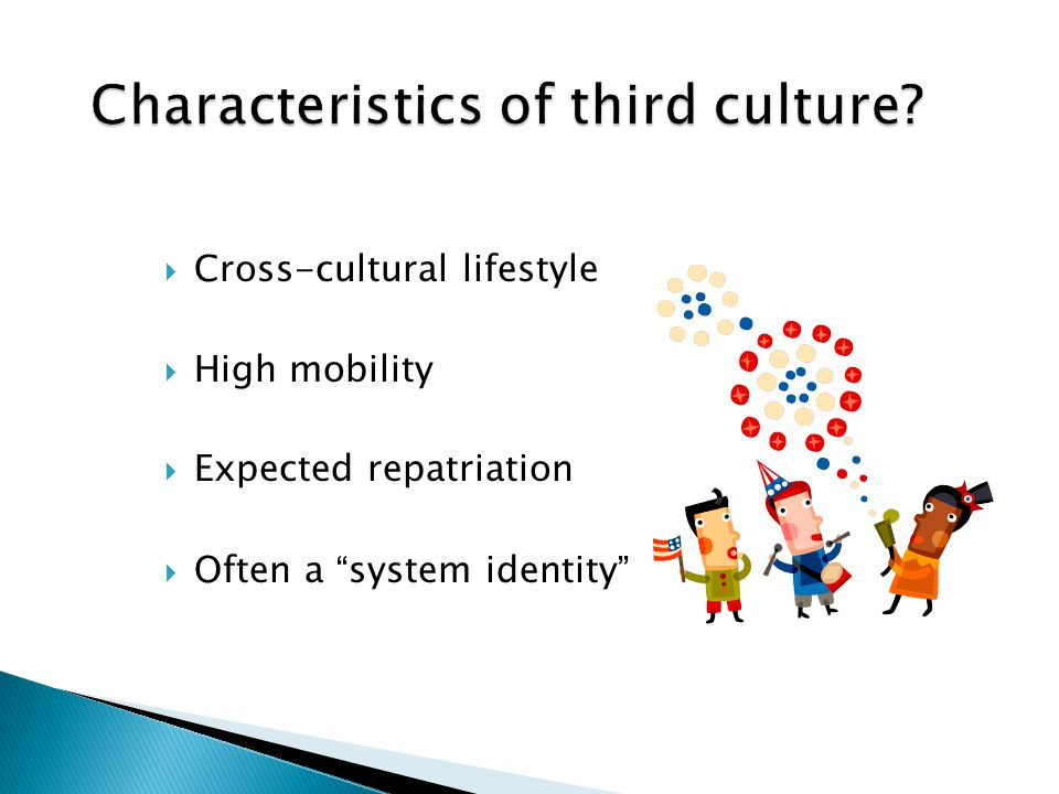 """ Cross-cultural lifestyle  High mobility  Expected repatriation  Often a """" system identity """""""