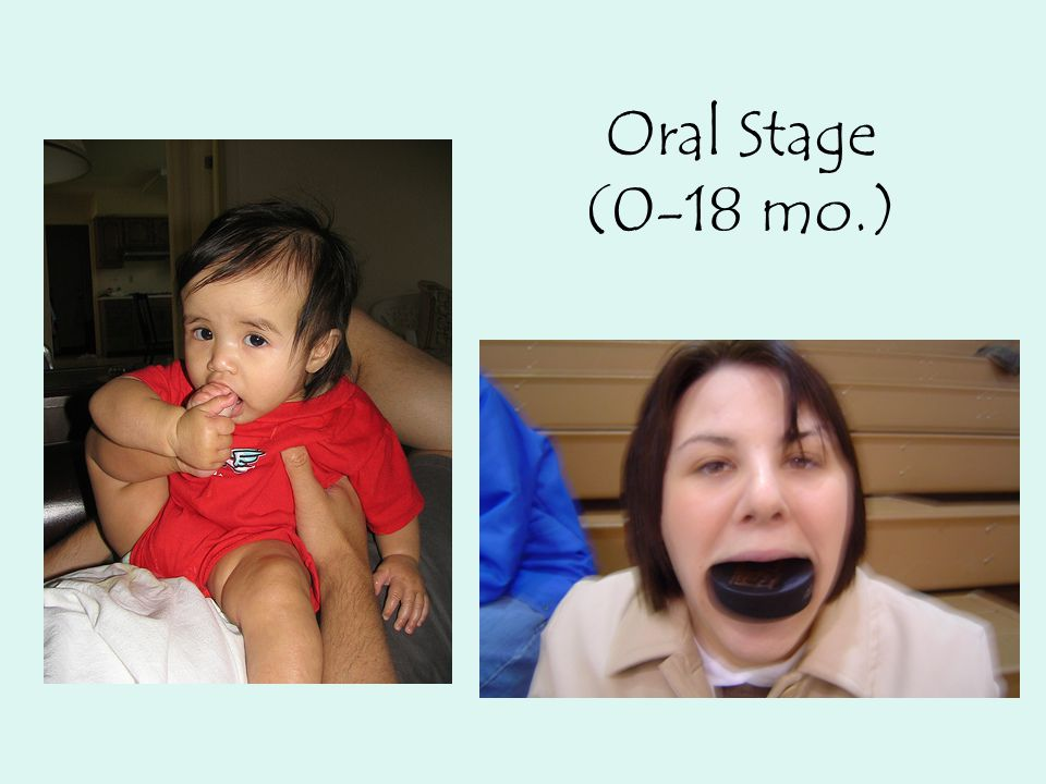 Anal Stage (18-36 mo.)