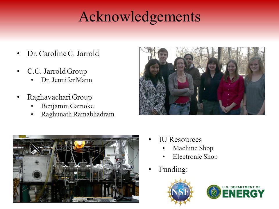 Acknowledgements Dr. Caroline C. Jarrold C.C. Jarrold Group Dr.