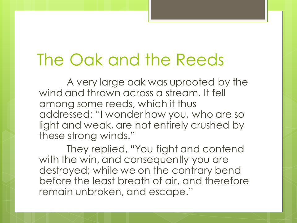 The Oak and the Reeds  Topic. Plot Summary.  Theme.