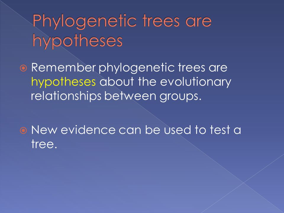  Remember phylogenetic trees are hypotheses about the evolutionary relationships between groups.
