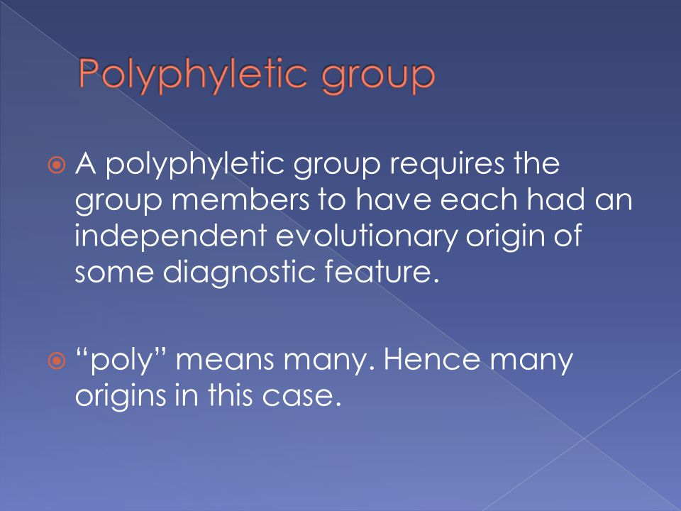  A polyphyletic group requires the group members to have each had an independent evolutionary origin of some diagnostic feature.