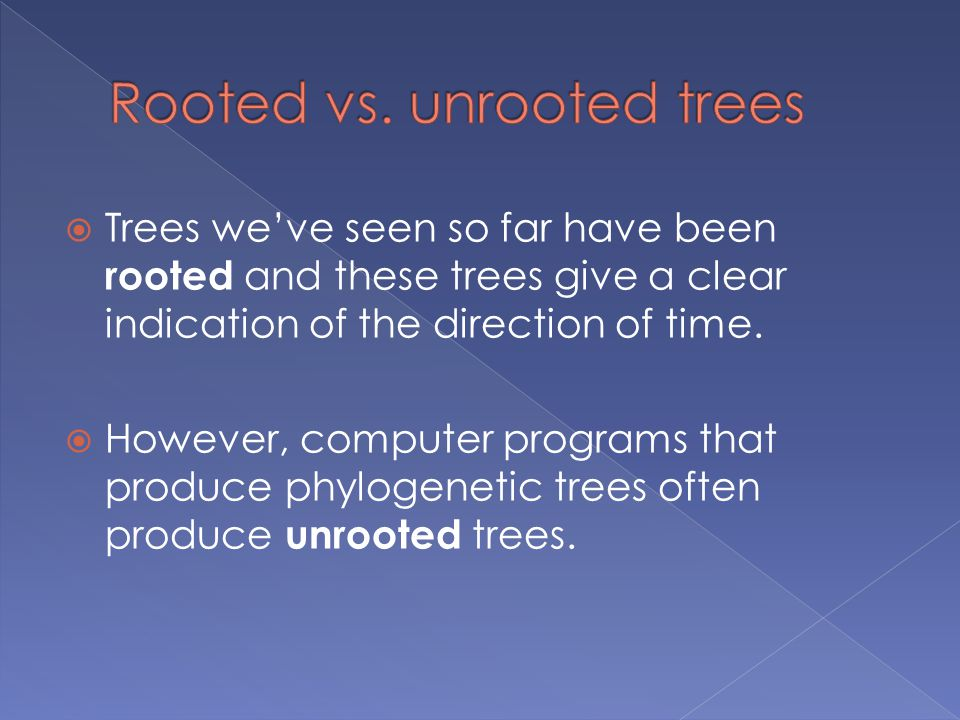  Trees we've seen so far have been rooted and these trees give a clear indication of the direction of time.