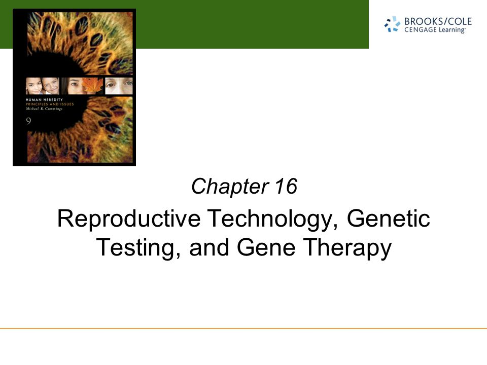 Michael Cummings David Reisman University of South Carolina Reproductive Technology, Genetic Testing, and Gene Therapy Chapter 16
