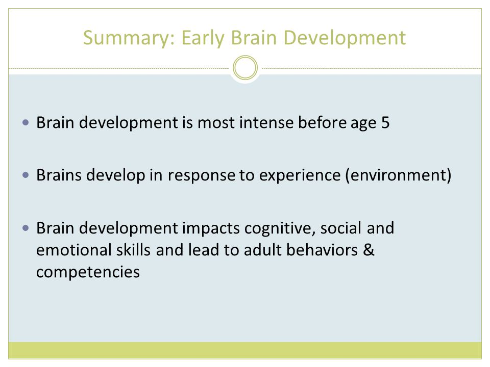 Summary: Early Brain Development Brain development is most intense before age 5 Brains develop in response to experience (environment) Brain developme