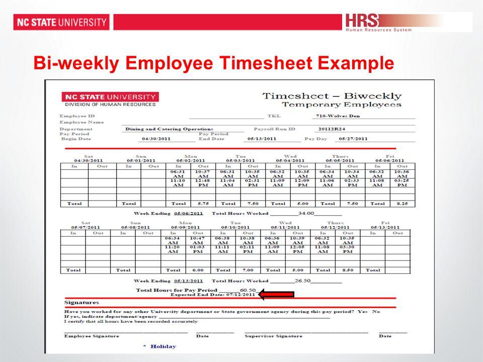 Bi-weekly Employee Timesheet Example