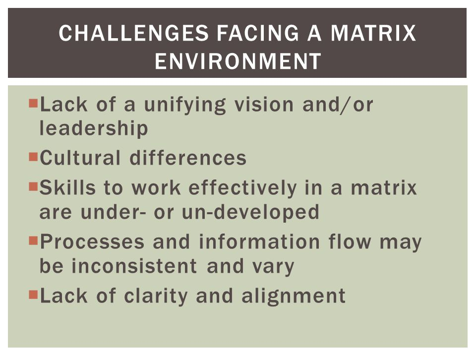  Lack of a unifying vision and/or leadership  Cultural differences  Skills to work effectively in a matrix are under- or un-developed  Processes and information flow may be inconsistent and vary  Lack of clarity and alignment CHALLENGES FACING A MATRIX ENVIRONMENT