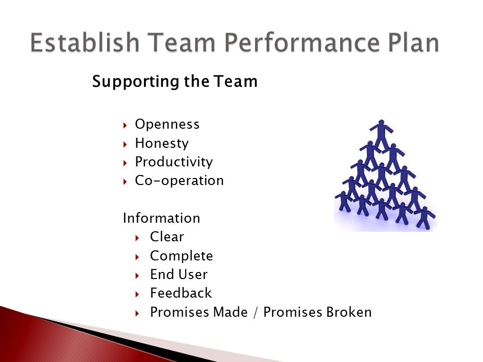 Supporting the Team  Openness  Honesty  Productivity  Co-operation Information  Clear  Complete  End User  Feedback  Promises Made / Promises
